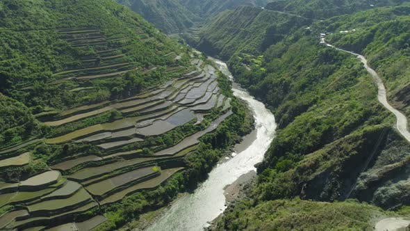 Thumbnail for Rice Terraces in the Mountains