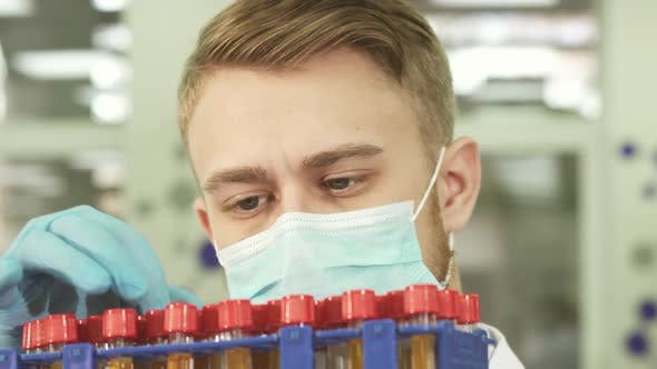 Thumbnail for A Serious Lab Technician Studies Test Tubes with Assays