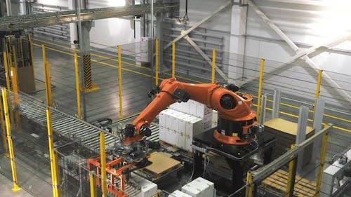 Robot Loader at the Factory