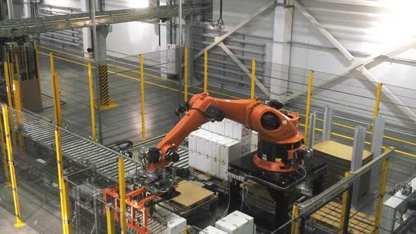 Thumbnail for Robot Loader at the Factory