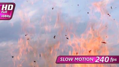 Fluttering Ash