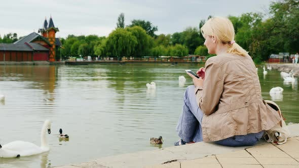 Cover Image for Always in Touch. A Young Woman Is Resting By the Lake, Using a Smartphone. Near Swans Swim