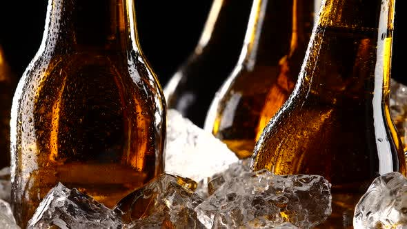 Thumbnail for Beer Festival, Bottles Stand in Pieces of Ice. Black Background. Silhouette. Close Up