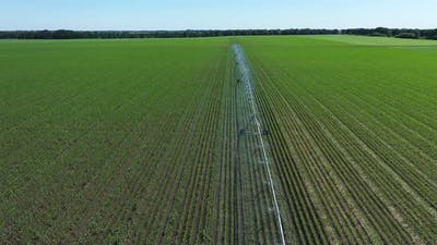 Irrigation Farming Field. Irrigation System for Farming