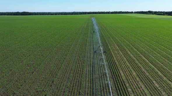 Thumbnail for Irrigation Farming Field. Irrigation System for Farming