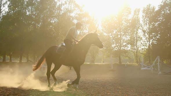 Thumbnail for Young Man Taming Graceful Animal, Riding Horseback at Allure, Active Lifestyle