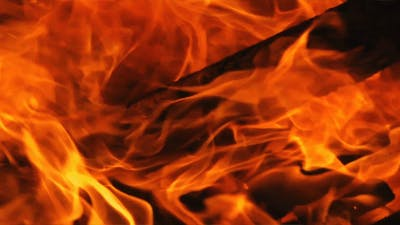 Wood Fire 3
