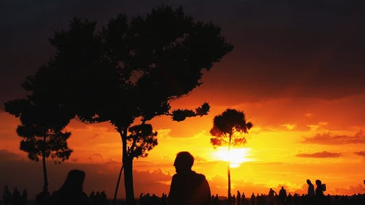 Cover Image for Sunset and People Silhouette 3