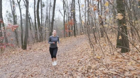 Junges schlankes Mädchen macht Laufübungen im Herbstwald. Laufendes Konzept