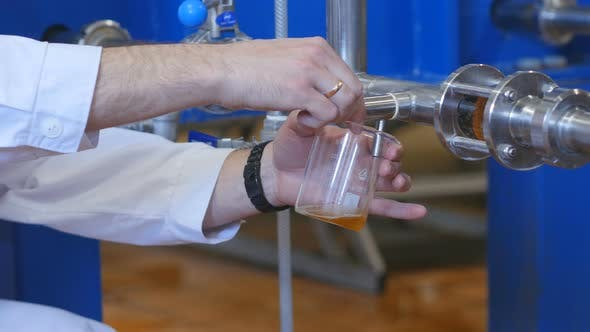 Thumbnail for Closeup Of The Faucet Poured Beer In The Beer Production