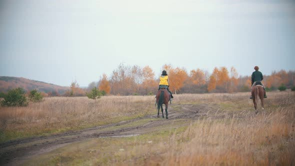 Thumbnail for Two Women Are Riding Ginger Horses on the Autumn Field