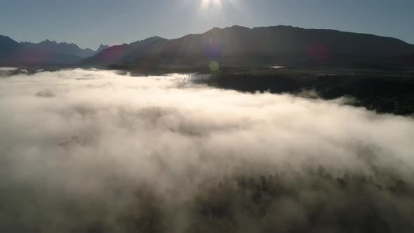 Cover Image for Epic Landscape Aerial Over Lowland Fog With Tree And Mountain Silhouette