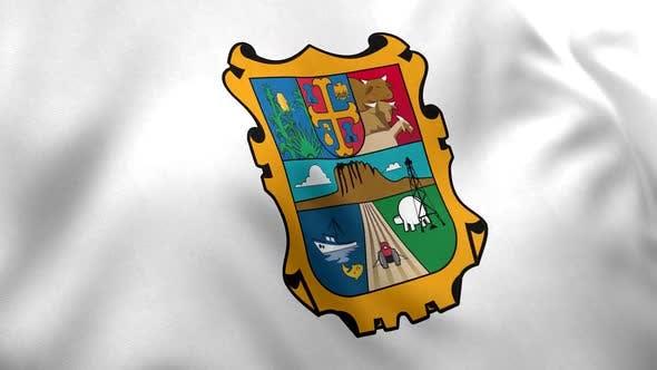 Tamaulipas Flag (Mexico)