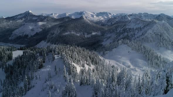 Thumbnail for High Helicopter Angle On Mountain Forest Covered In Winter Snow