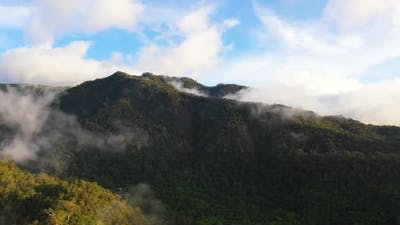 Mountains with Rainforest and Clouds