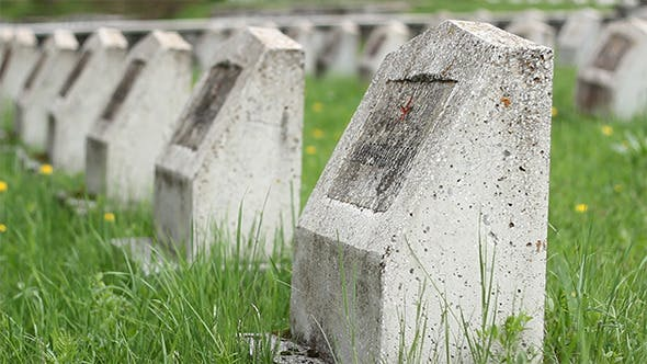 Thumbnail for Red Army WWII Cemetery