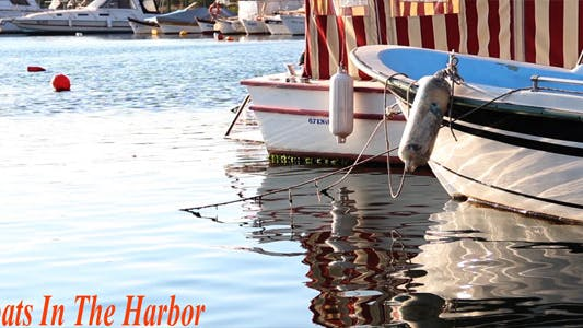 Thumbnail for Boats In The Harbor