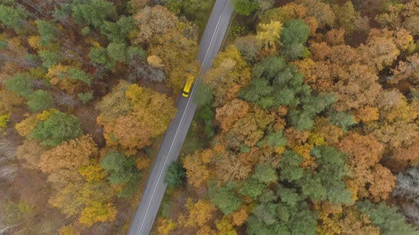 Thumbnail for Drone Following Yellow Bus or Truck Speeding on Mountain Road in the Autumn