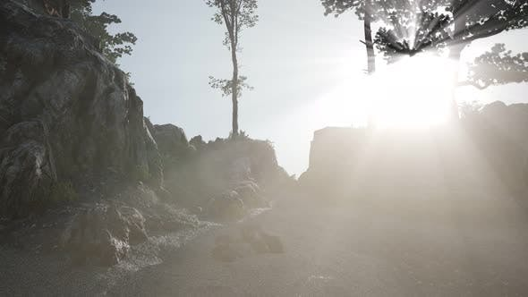 Thumbnail for Trees on Rocks in Mountains at Sunset