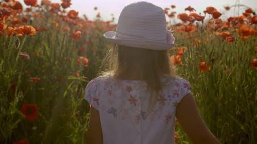 Little Girl Walking Through a Poppy Field