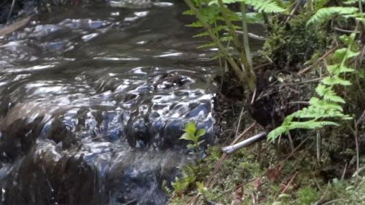 Thumbnail for Japanese Garden - Waterfall Stream - 04
