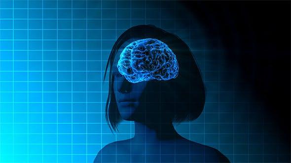 Thumbnail for Female Brain Activity