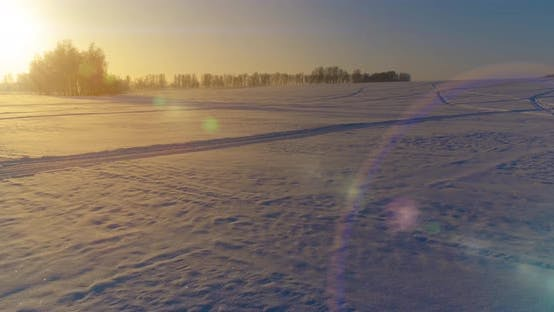 Thumbnail for Aerial Drone View of Cold Winter Landscape with Arctic Field, Trees Covered with Frost Snow and
