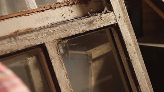 Thumbnail for Old Broken Windows