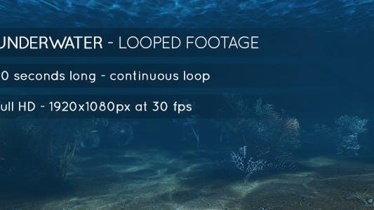 Thumbnail for Underwater Scene