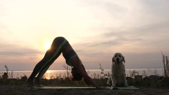 Thumbnail for Healthy Woman Exercising Yoga on Coast at Sunset
