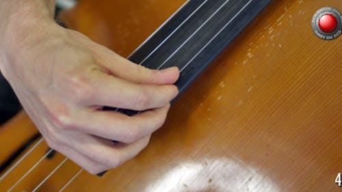 Cello's Strings