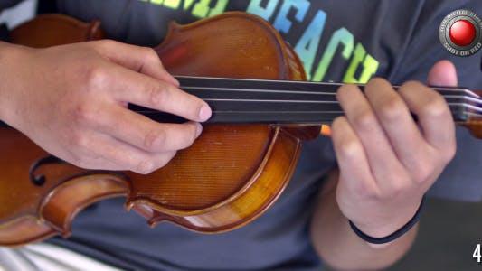 Thumbnail for Violin 3