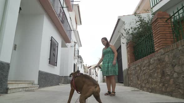 Thumbnail for happy woman playing with boxer dog in the street
