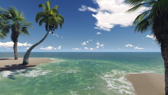 Thumbnail for Tropical Heaven