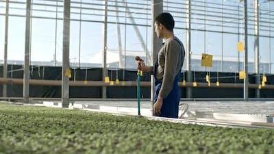 Greenhouse Laborer Watering Seedlings