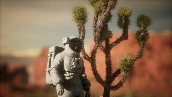 Thumbnail for Astronauth in the High Desert of Nevada