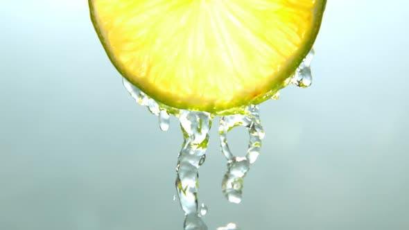Thumbnail for Lemon Fruits