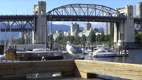 Vancouver - Granville Island Harbor - 17