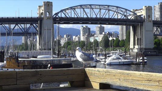 Thumbnail for Vancouver - Granville Island Harbor - 17