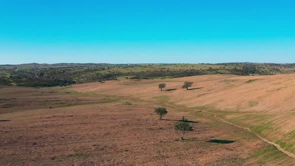 Thumbnail for Aerial View Green Rural Landscape Alentejo