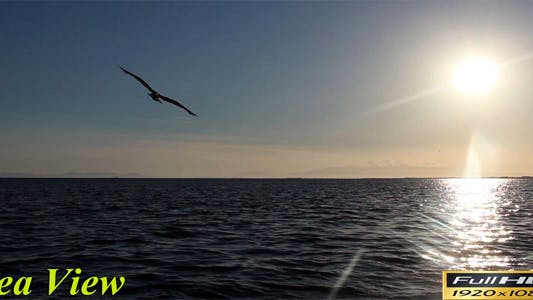Thumbnail for Sea View