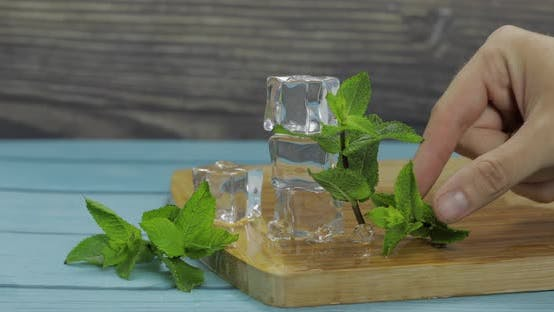 Thumbnail for Ice Cubes and Mint Leaves Isolated on Wooden Cutting Board