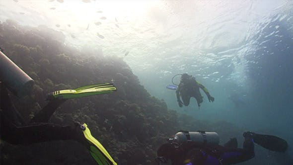 Thumbnail for Group of Divers Make to Dive 673
