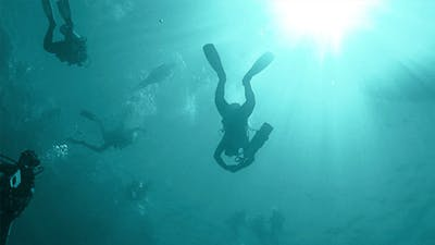 Group of Divers Make to Dive 682