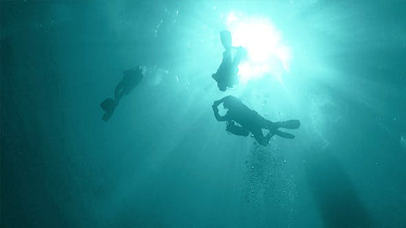 Thumbnail for Group of Divers Make to Dive 683