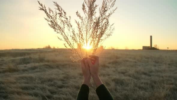 Thumbnail for Autumn Landscape, Woman Traveler Having Fun at Sunrise