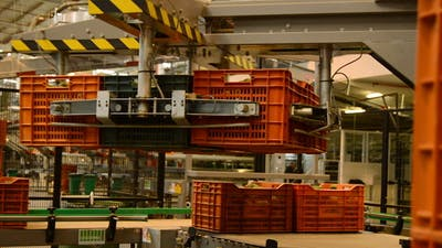 Industry Fruit