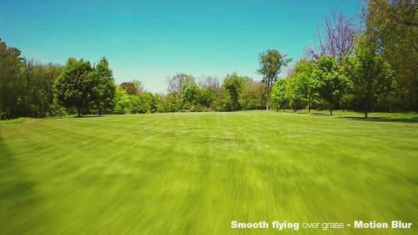 Thumbnail for Smooth Flying Over Green Grass and Forest