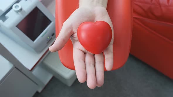 Thumbnail for Red Rubber Heart in a Hand. Man Hand Is Donating Venous Blood. Gripping Squeezing Stress Ball. Blood