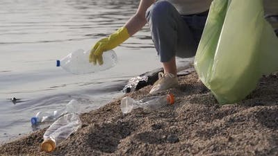 Young Woman Clean Up the Beach From a Trash